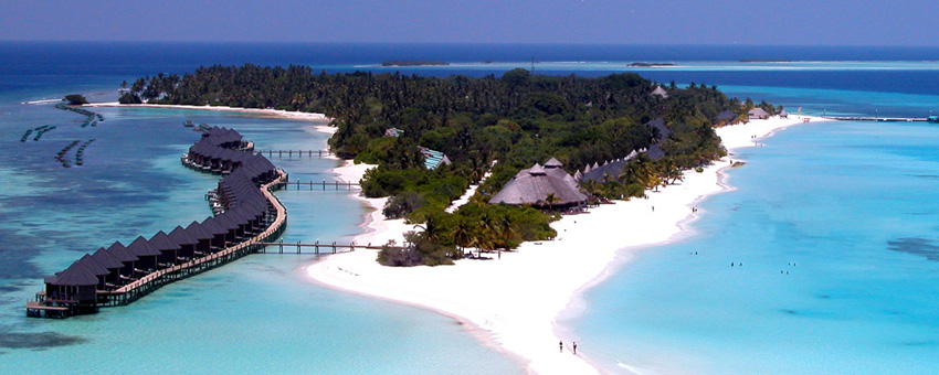 马尔代夫 / 四星级岛屿 / 海洋国旅海岛专家